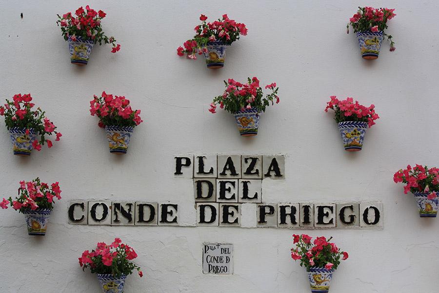 Mur en fleurs pour la fête Cruces de Mayo en Andalousie