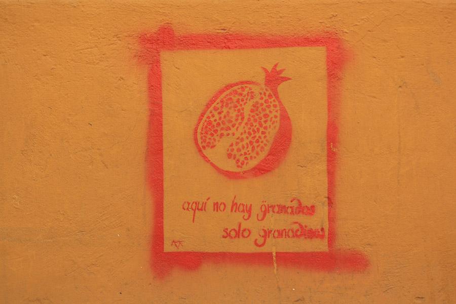 Grenade n'est pas un fruit mais une ville d'Espagne