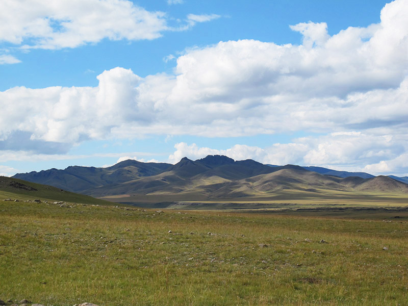 mongolie steppes
