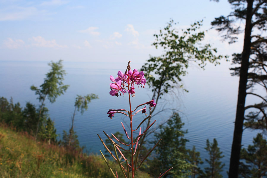 great_baikal_trail (6)