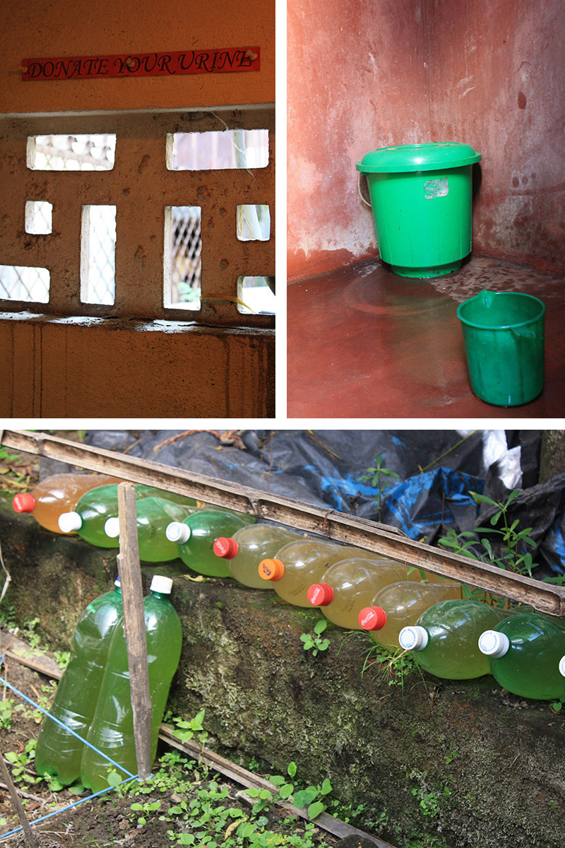 nepal_fost_urine