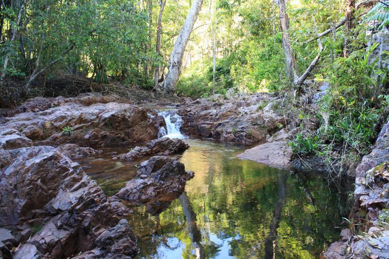 Litchfield creek walk