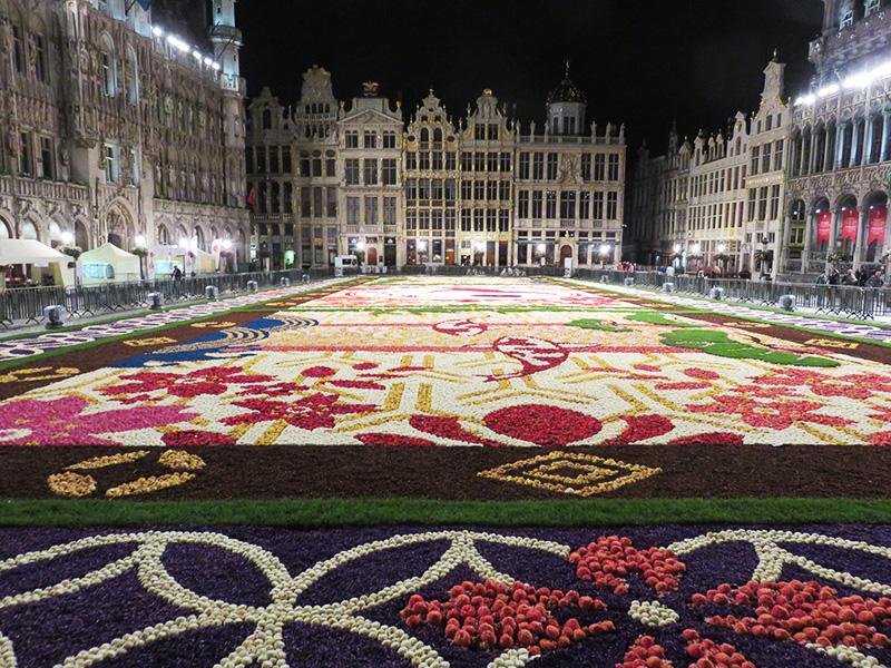 Tapis de fleur à Bruxelles by night