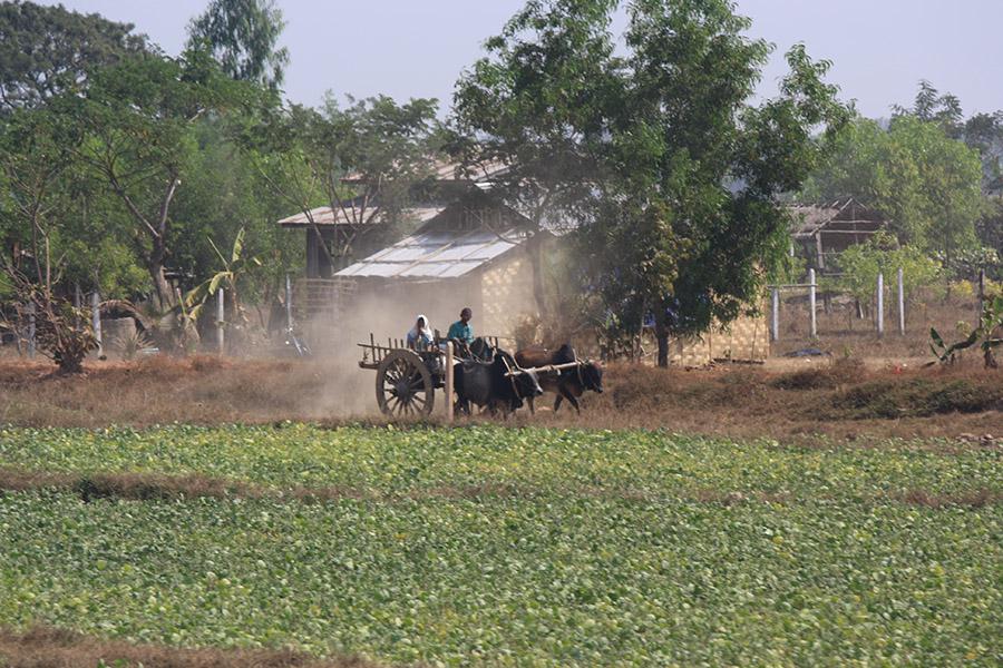 birmanie_bago (8)