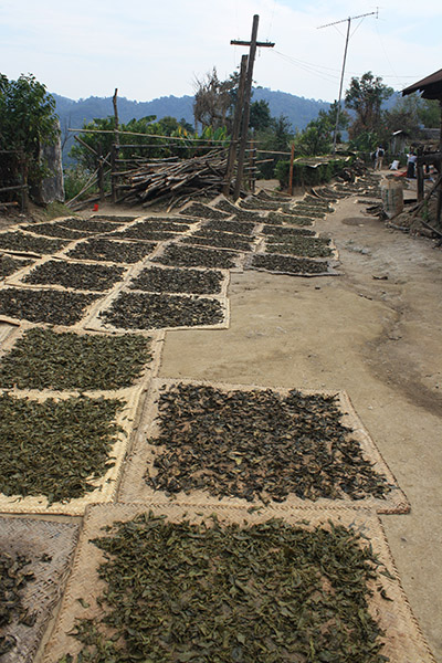 birmanie_trek_hsipaw (22)