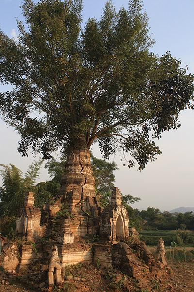 birmanie_hsipaw (11)
