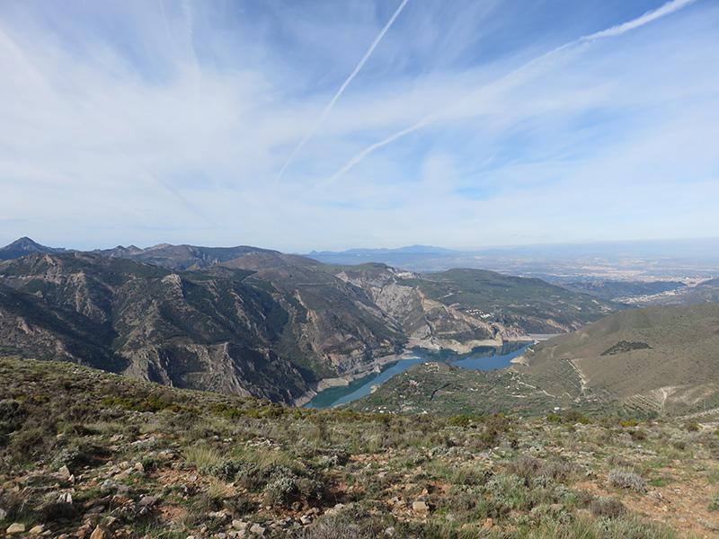 Paysage d'Andalousie, oliveraies sur collines