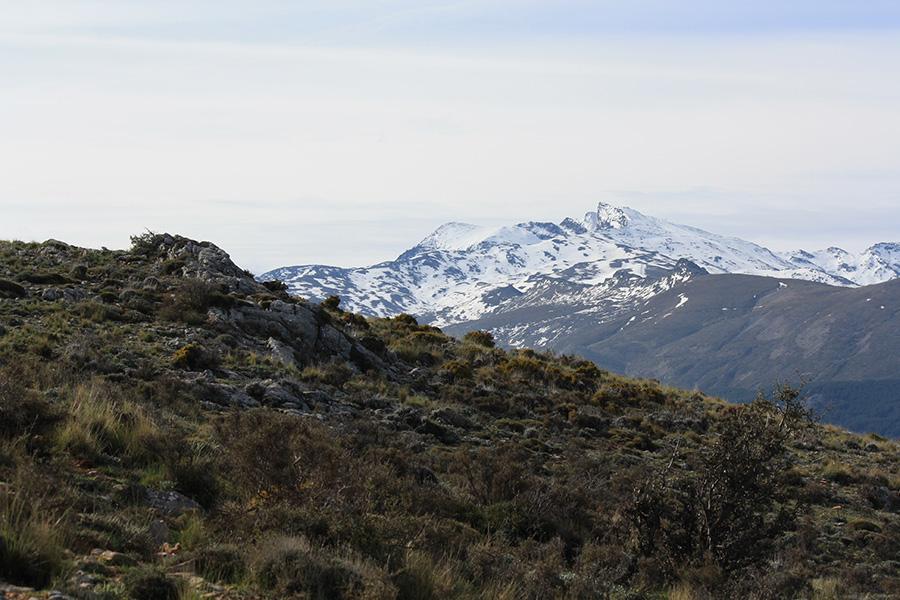 Sierra Nevada avec sommet du Mulhacen