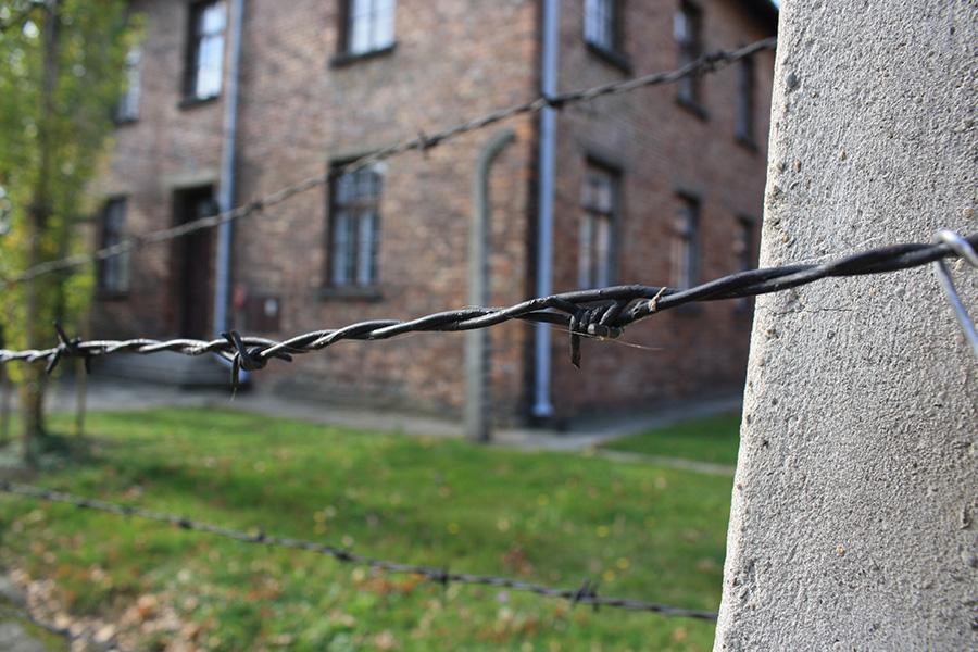 Grillage et barbelés à Auschwitz Birkenau