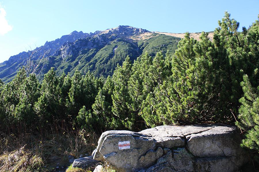 Randonnée dans les Tatras polonaises