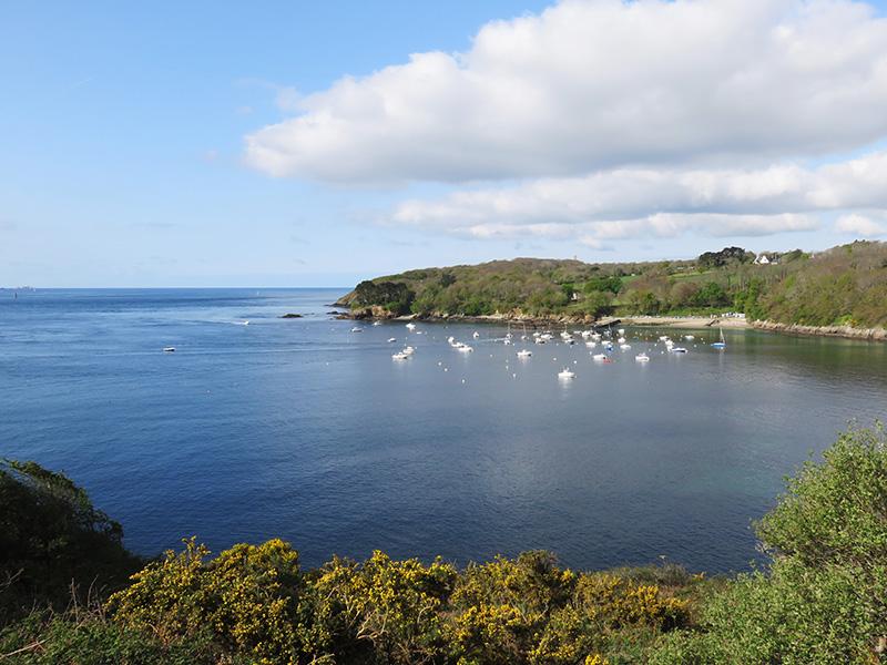 Vue sur les falaises du Finistère