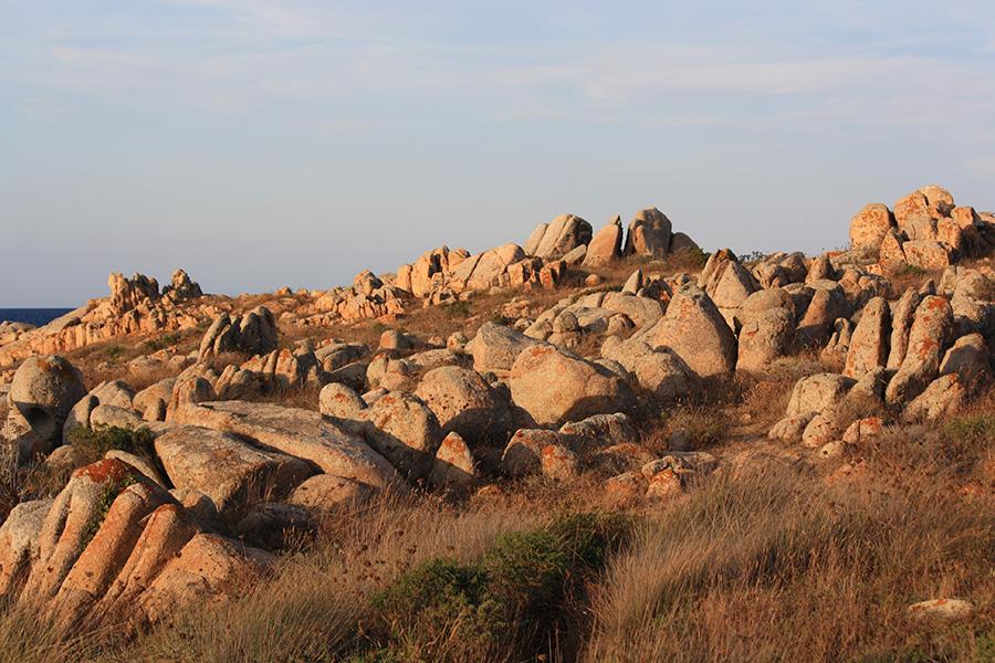 Balade sur les roches des îles Lavezzi en Corse
