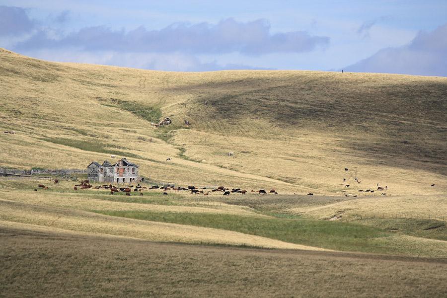 Puy Gros, plateau et steppe de Mongolie