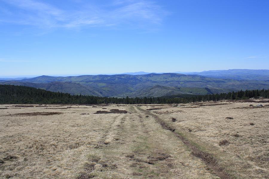 Randonnée sur le sommet de Finiels et le mont Lozère
