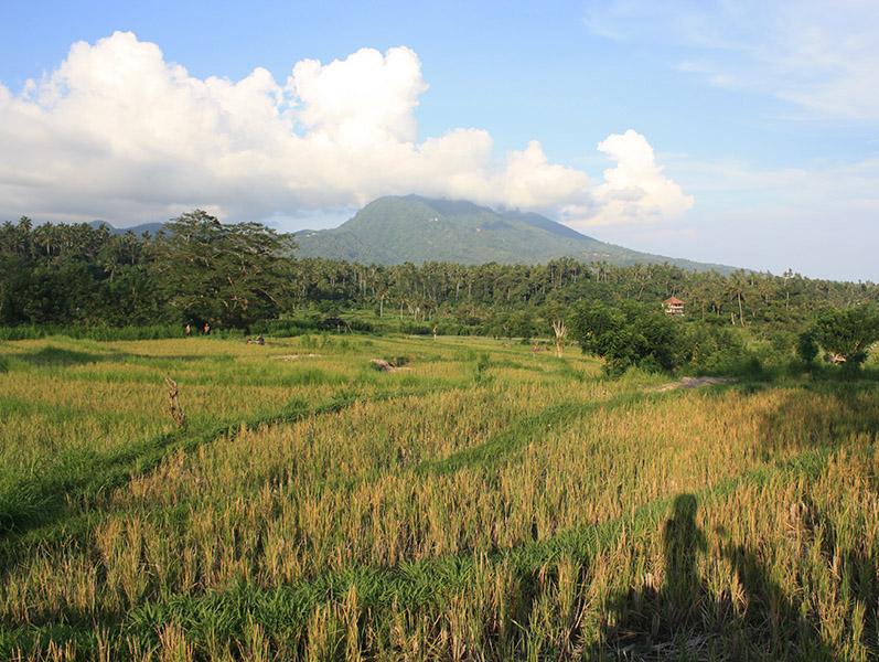 Indonesie_Bali_Amed_Boucle (2).jpg