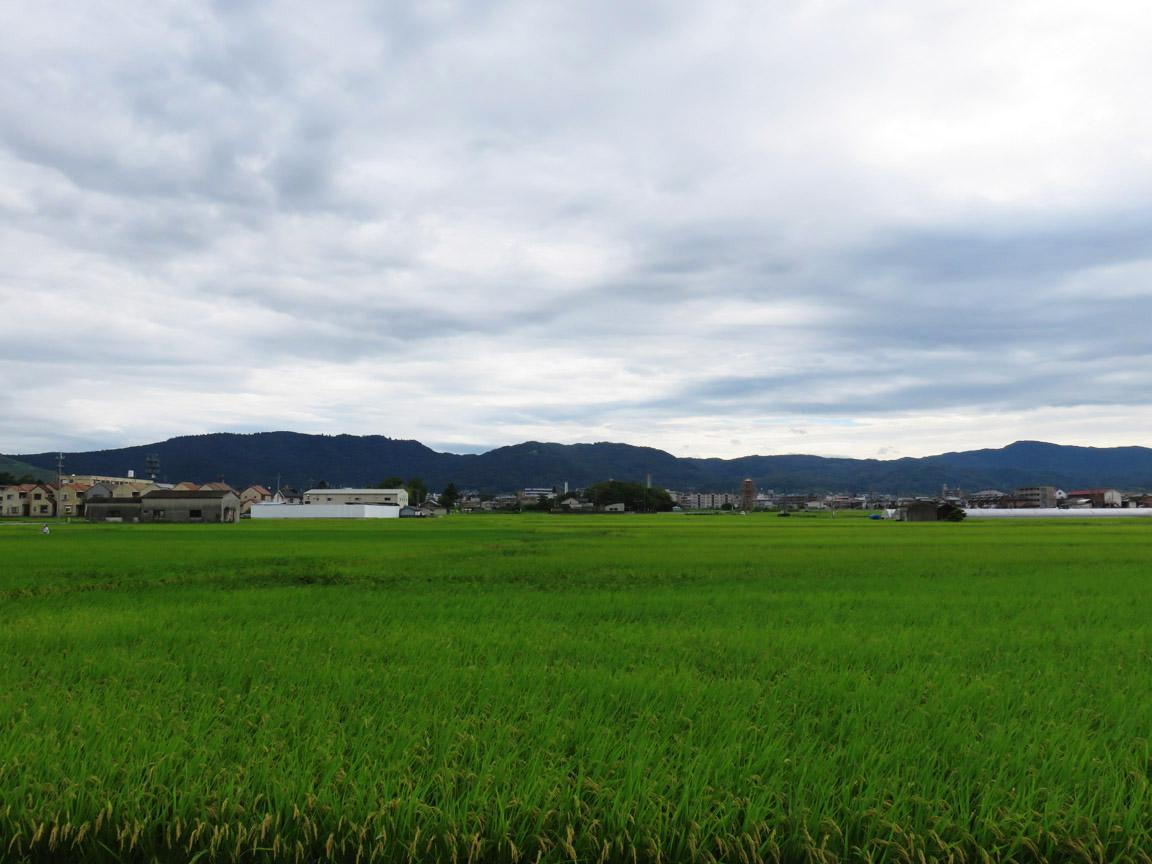 japon_nara4