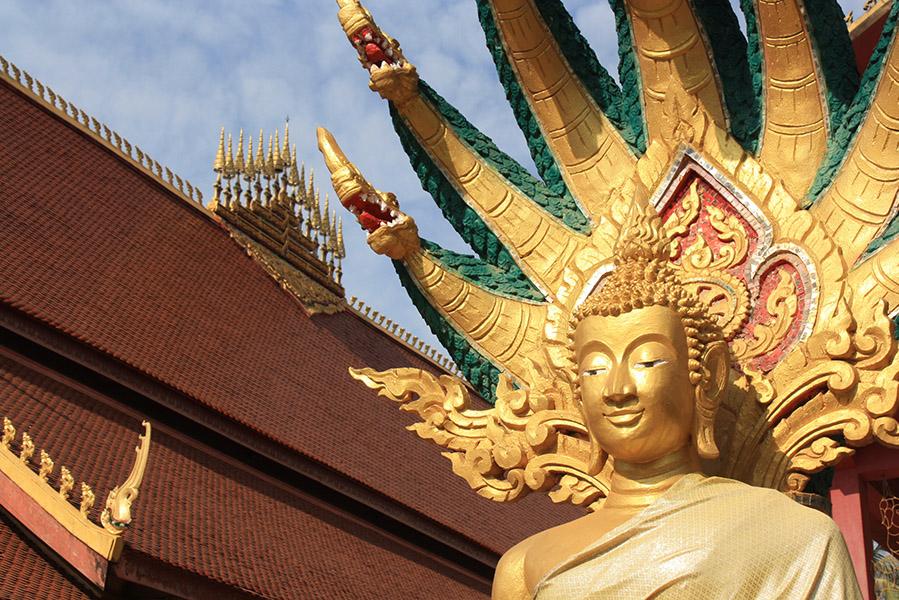 bouddha en lotus sous naga