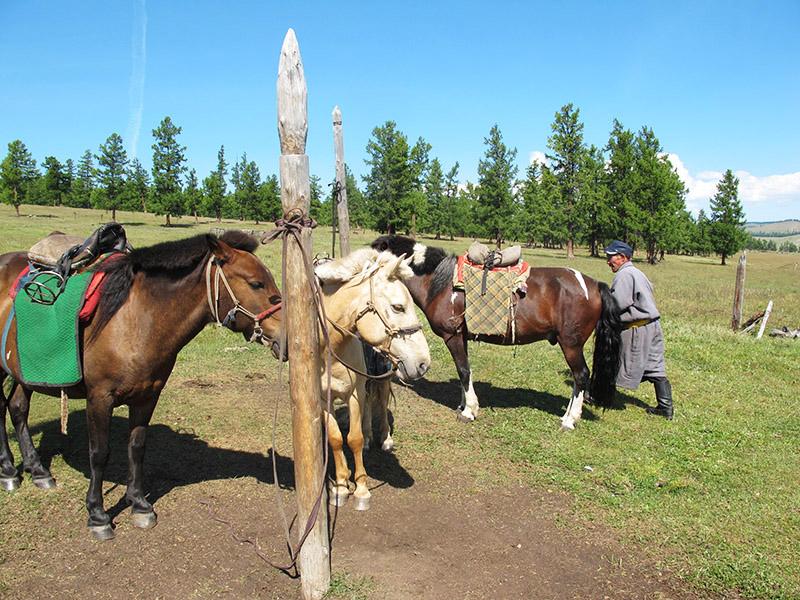 mongolie_khovsgol_balade_a_cheval (6)