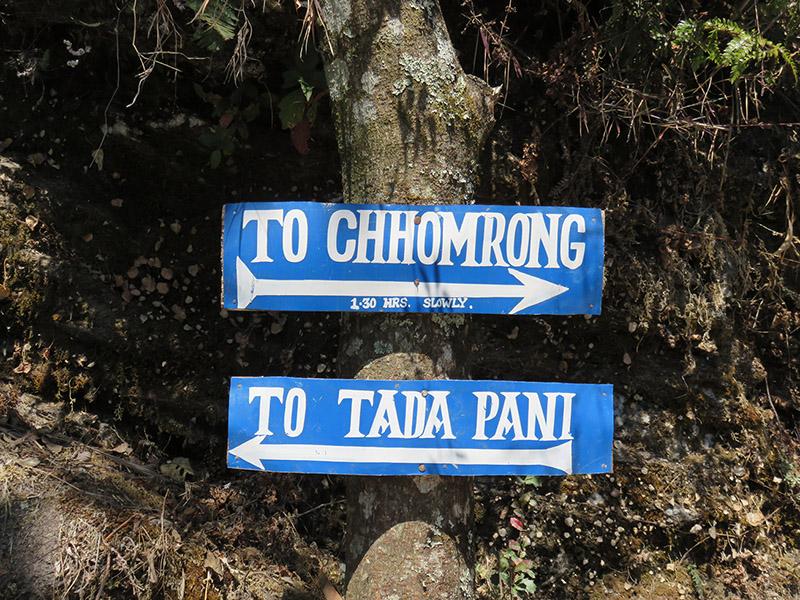 nepal_trek_abc_tadapani_chomrong (3).jpg