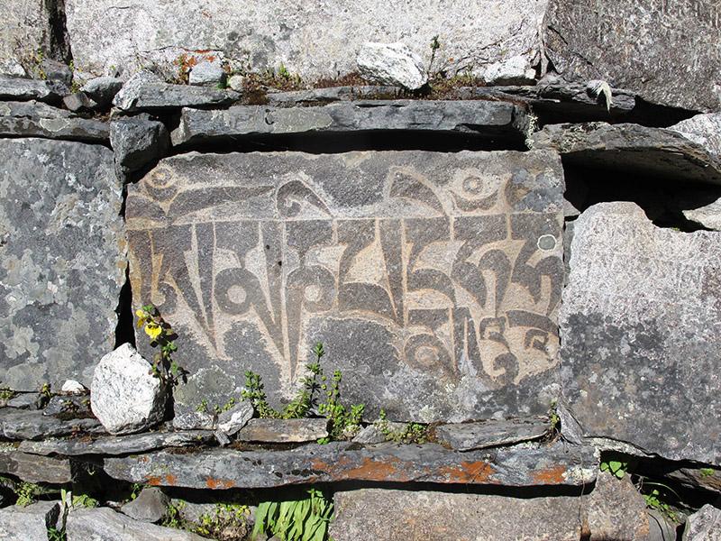 nepal_langtang_trek (179)