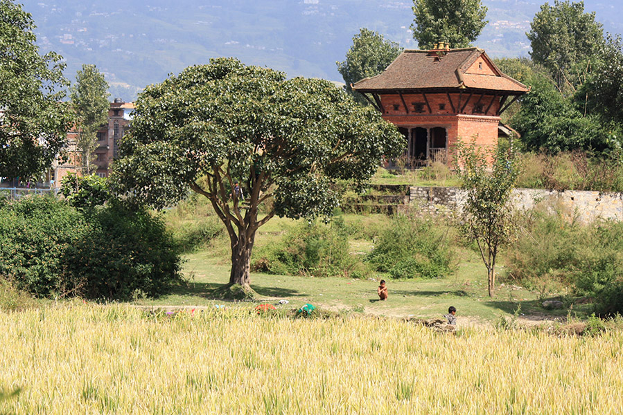 nepal_bhaktapur_bis (7)