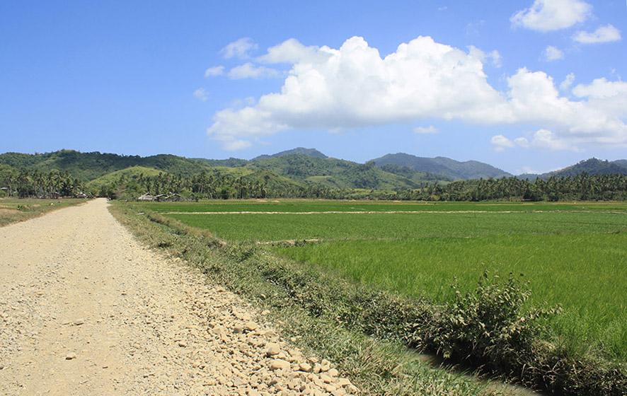 Philippines_Palawan_ElNido_Scooter_Nacpan (9).jpg